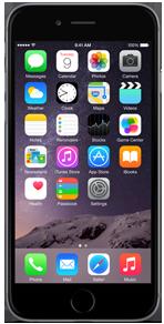 apple-iphone-6-16gb-space-gray-450x350-e1433513792618[1]